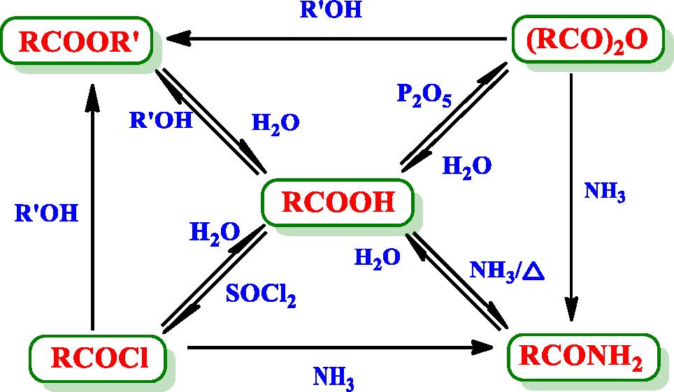 羧酸及其衍生物的相互转换